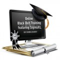 Six Sigma Black Belt Training - SigmaXL Edition